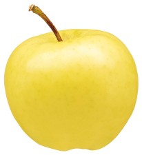 Ginger Gold apple