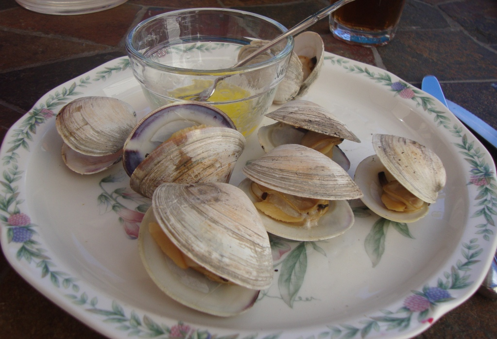 How To Grill Clams Recipe — Dishmaps