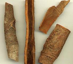 Spice bark