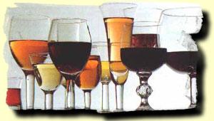 Chile Wine Tour--wines