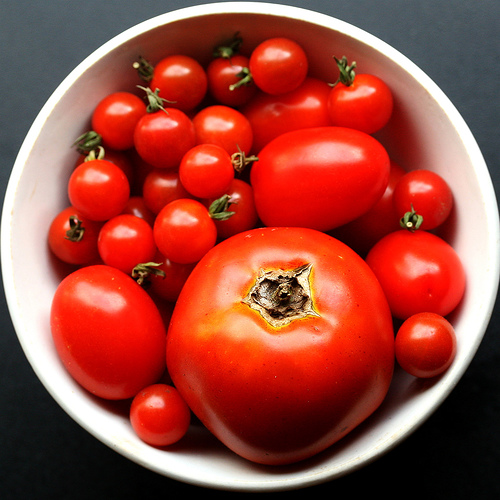Substitutes for Tomatoes in a recipe is hard to come by....but it can be done.