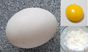 Egg- White & Yolk