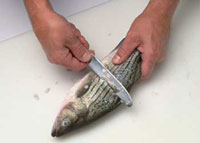 The method for scaling the fish