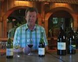 Best Bonterra Winery Vineyards Picks