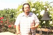 2006 Sonoma Carneros Merlot Wine Review