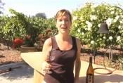 2006 Sonoma Carneros Pinot Noir Wine Review