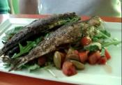 Grilled Sardine Salad At Wilson Restaurant
