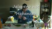 An Easy Method To Make Salsa
