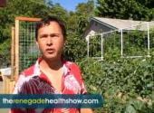 John Kohler On Urban Gardening Tips