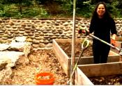 How To Do Vegetable Gardening