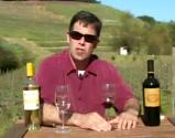Benziger Family Winery Review