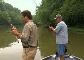 How To Do Bass Fishing On Barren River Lake