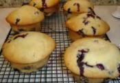 Blueberry Muffins Using Shortening