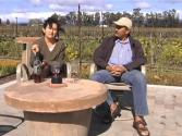 Ceja Vineyards Introduction