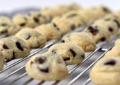 Chocolate Chip Cheesecake Cookie Bites