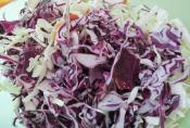 Citrus Tequila Slaw