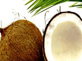 Is Coconut Oil Healthy And What About Lycopene