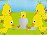 Five Little Ducks Nursery Rhyme