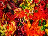 Chiles - Scoville Ratings