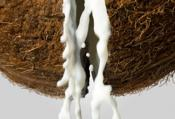 How To Make Coconut Cream From Fresh Coconuts