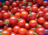Interesting Facts About Tomato