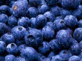 Effects Of Antioxidants In Blueberry