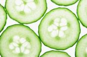 Best Cucumber Quotes