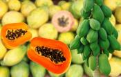 10 Reasons To Eat Papaya For Breakfast