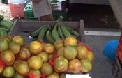 Local Farmer's Market In Quepos Review