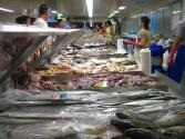 La Pescheria: The Fish Monger