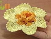 Crochet Narcissus Flower How To Tutorial 65 Part 1 Of 2 Crochet 3d Center With Spirals