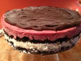 Sorbet Cake With Chocolate Glaze
