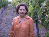 Grape Sampling With Amelia Ceja 2009 Vintage