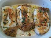 Grilled Halibut With Cheese