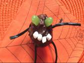 Halloween Cake Pops: Halloween Tricks And Treats