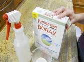 How To Kill Mold With Borax