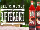 Eat & Drink From Big Red Soda Bottle