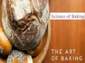 The Art Of Baking Or Science Of Baking?