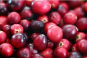 10 Things To Do With Cranberries