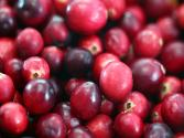 Eat A Cranberry Day: Don't Stop At One