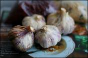History Of Garlic As Food