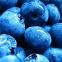 Easy Tips On How To Freeze Fresh Blueberries