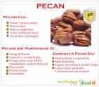 Let's Make Tasty Healthy Pecans A Part Of Our Diet!