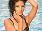 Poonam Pandey, Vijay Mallya Slapped With Court Notice !!!