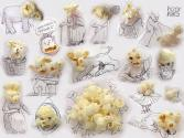 Enjoy Different Moods Of Popcorn