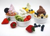 Hidden Ingredients In Frozen Yogurt!