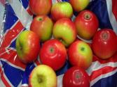 Save The English Apple