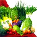 Eat 5 Servings Of Vegetables To Prevent Lung Cancer