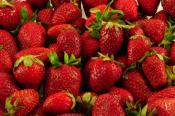 California Approves Cancer-making Chemical To Be Used On Strawberries