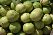 Is It Safe To Eat Guava During Pregnancy?